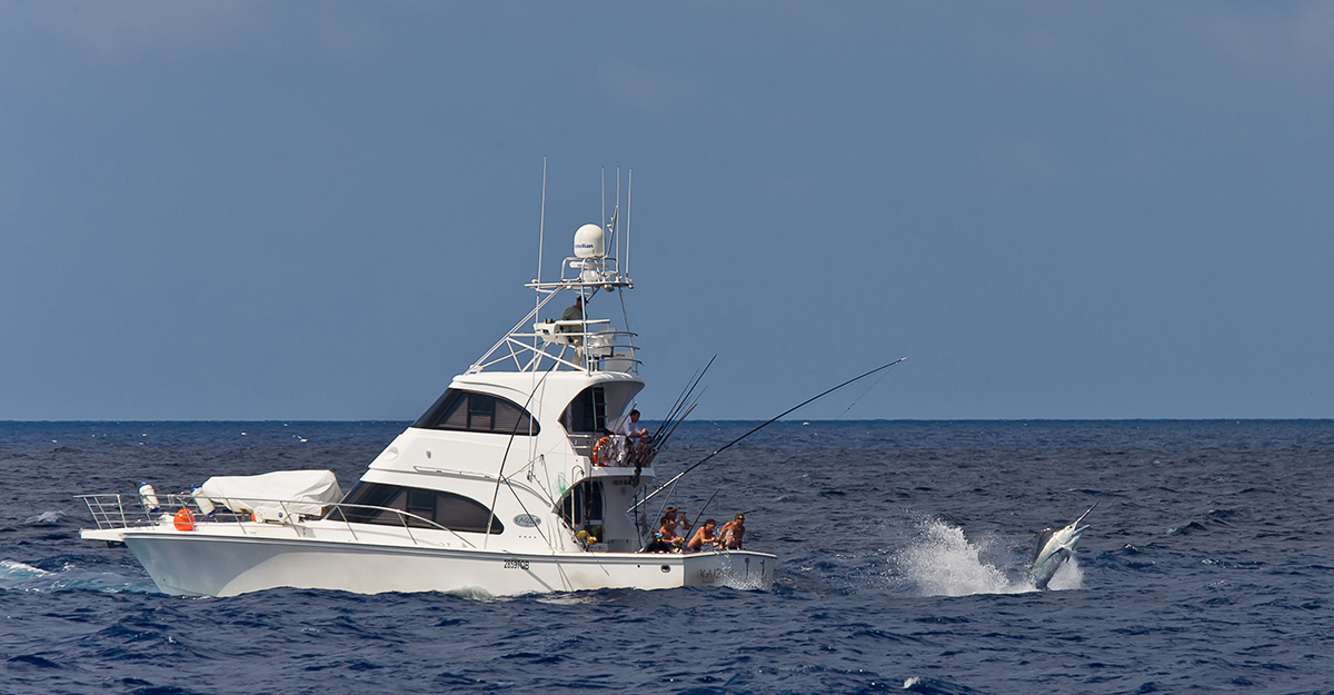Image of Fishing Charter Boat Called Kaizen 52
